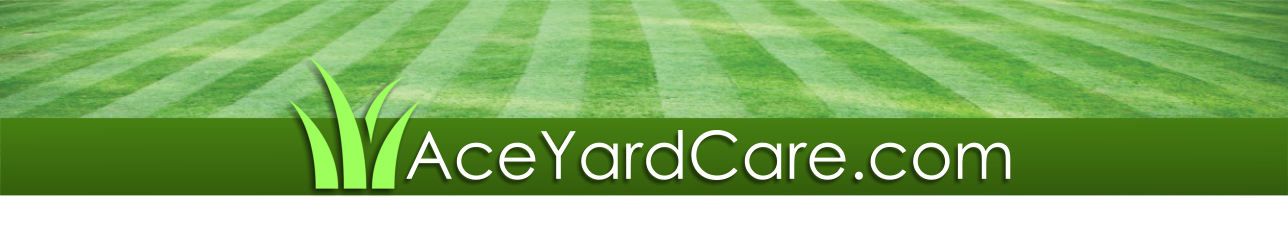 $29 Lawn Mowing and Yard Care Euless, TX